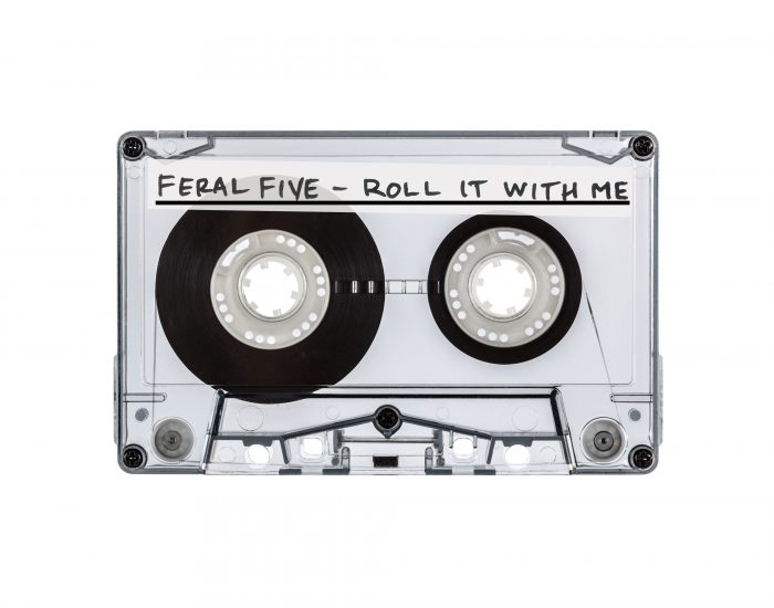 Feral Five, track artwork, Roll It With Me
